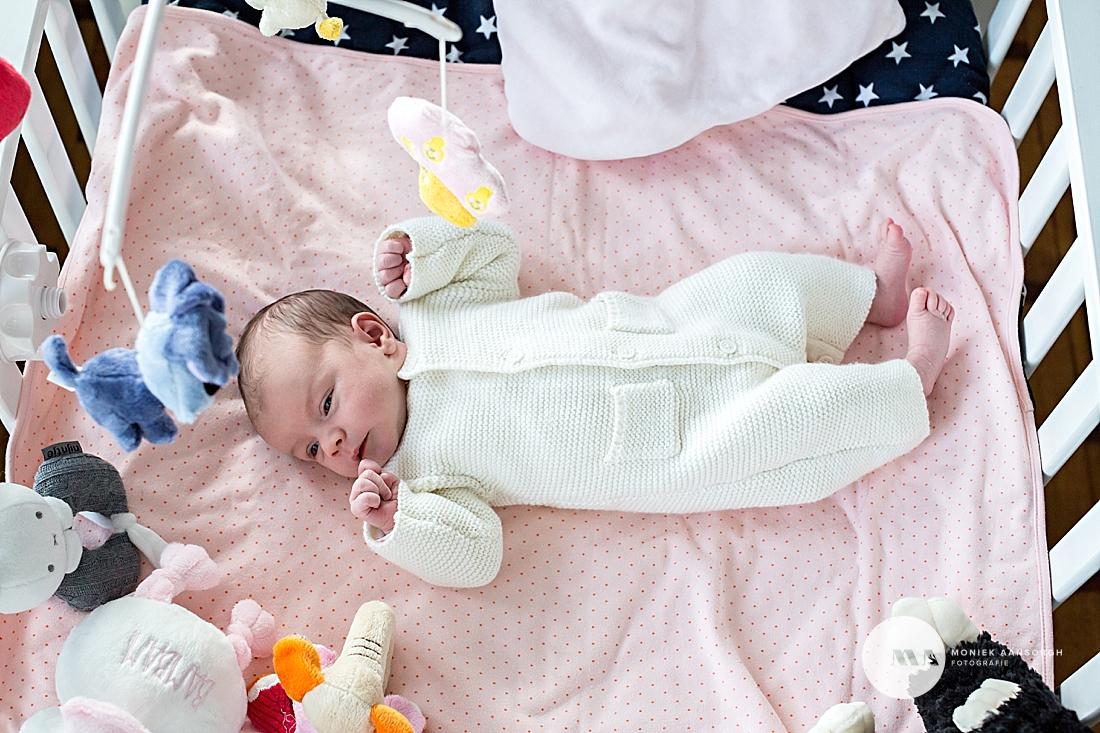 Newborn_Lifestyle_Fotografie_Den_Haag